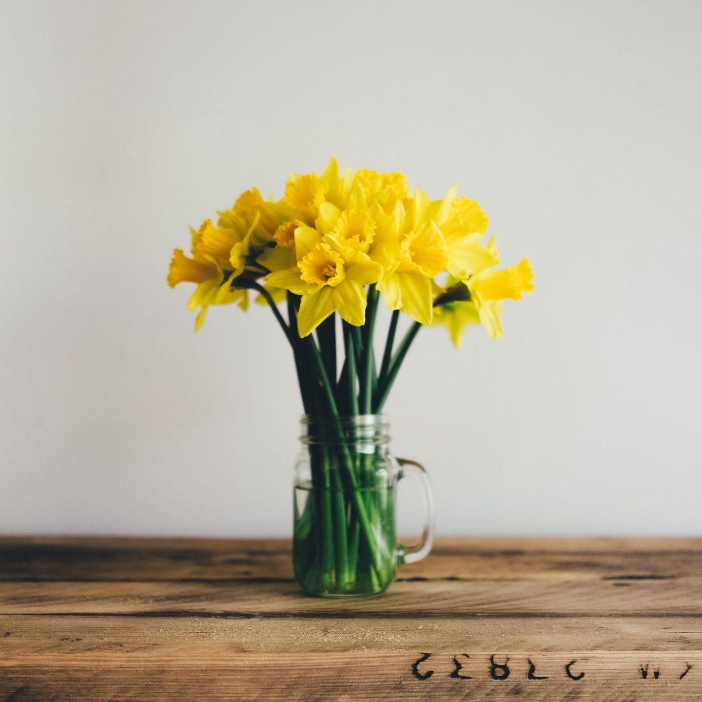 Våren och nya väggar